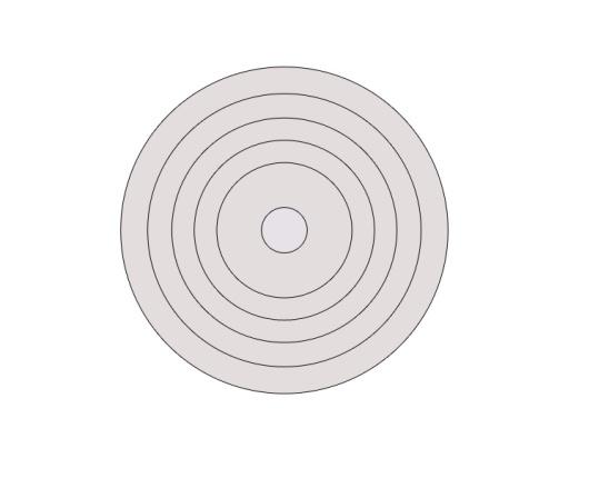 Concentric Circles.